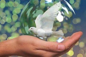 امثال وحكم عن السلام عبارات وخواطر جميلة عن السلام ونبذ الحرب