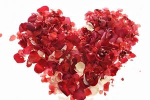 اشعار حب وغزل رومانسية في غاية الروعة والجمال