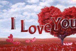 احبك شعر غزل 5 قصائد حب رومانسية روعة