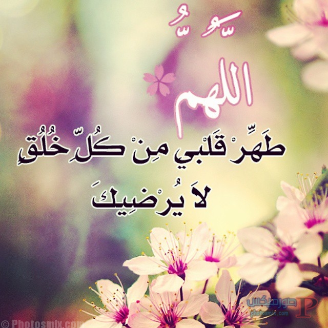 اللهم طهر قلبي من كل خلق لا يرضيك ..