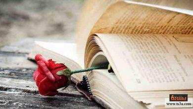 قصص حب