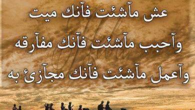 امثال عربية