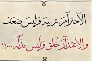 كلمات عربية بالعلم تجذب وبالأخلاق تجذب القلوب مصطفى نور الدين Aesthetic Words Life Quotes Words Quotes