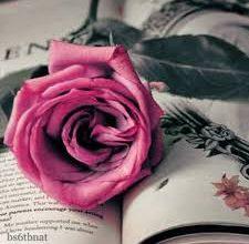 خواطر عن الورد