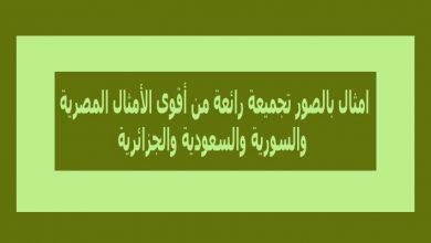 امثال بالصور تجميعة رائعة من أقوى الأمثال المصرية والسورية والجزائرية