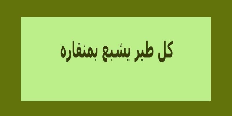 امثال بالصور تجميعة رائعة من أقوى الأمثال المصرية والسورية والجزائرية لاتفوتكم -بالصور