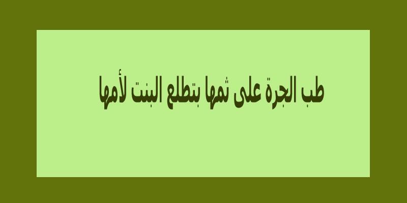 امثال بالصور تجميعة رائعة من أقوى الأمثال المصرية والسورية والجزائرية لاتفوتكم -بالصور3
