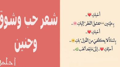 شعر حب وشوق وحنين