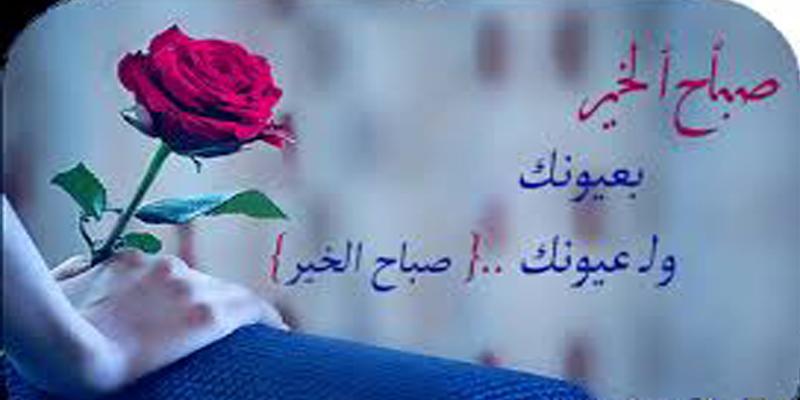 صباح الخير حبيبي انستقرام صباح الورد على عيون حبيبي