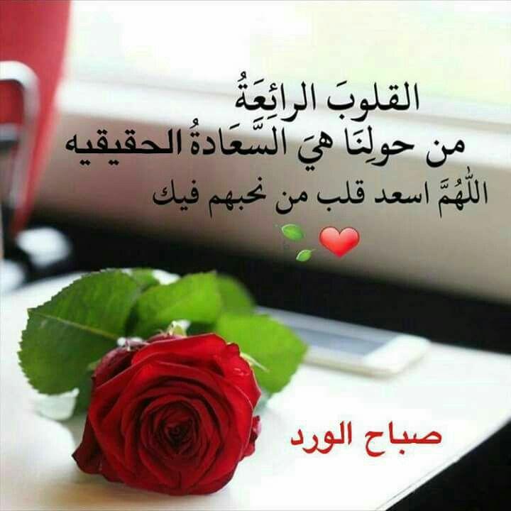 صباح الورد والياسمين للطيبين 4
