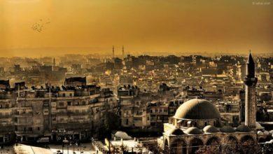 شعر عن حلب