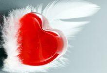 حكم و مواعظ عن الحب