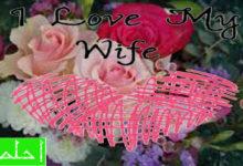 شعر حب للزوجة