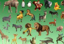 معلومات عن الحيوانات للاطفال