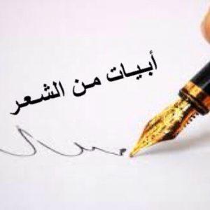 كلمات شعر حب مصري
