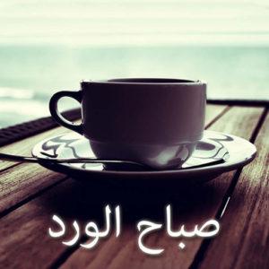 رسائل صباح الفل و الياسمين