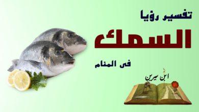 تفسير الحلم بأكل السمك