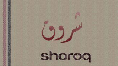 شعر حب باسم شروق