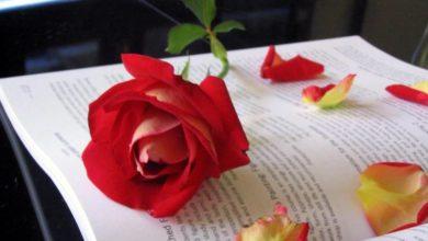 رسائل حب و غرام