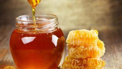 حلم العسل