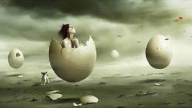 تفسير حلم البيض