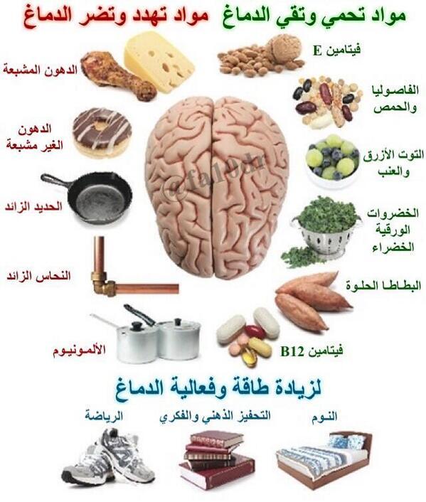 اطعمة و عناصر مفيدة للمخ