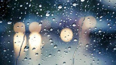 تفسير حلم نزول المطر للعزباء