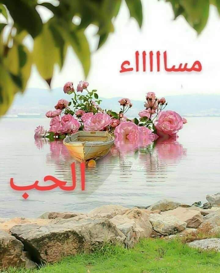 رسائل مساء الحب لحبيبي 20 رسالة غرام وشوق