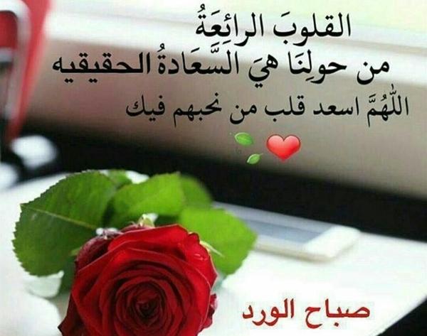 صباح الورد للقلوب الرائعة