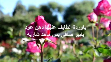 يا وردة الطايف