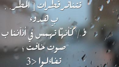 تتناثر قطرات المطر بهدوء