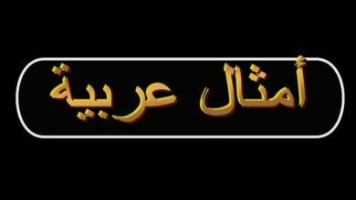 عبارات عربية عن الحياة