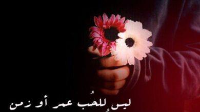 الحب اروع المشاعر