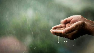 حلم المطر