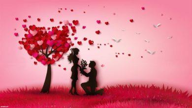 خواطر حب و عشق