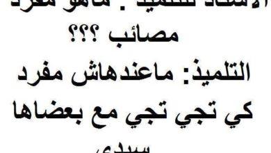 التلميذ العربي