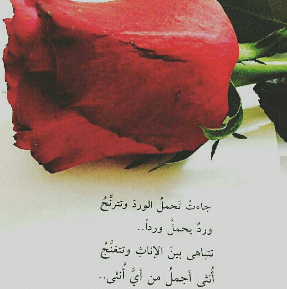 10 عبارات عن الورد الأحمر وحالات للواتس معبرة ونابعة من القلب
