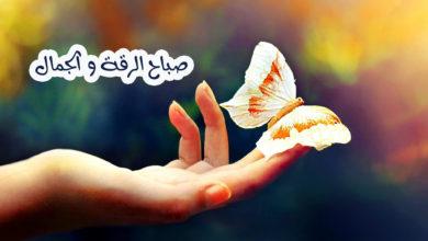 صباح الرقة