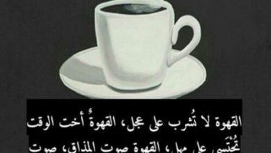 القهوة تشرب بهدوء