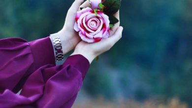 كلام عن الورد والحب
