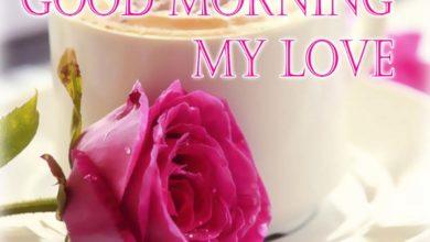 صباح الحب للحبيب