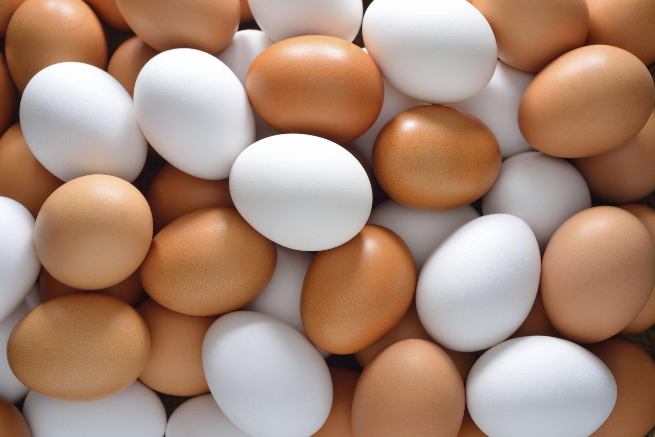 حلم البيض