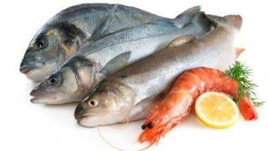 رؤية السمك في المنام
