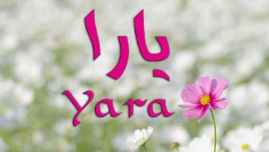 معنى اسم يارا