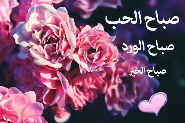 صباح الحب - صباح الورد