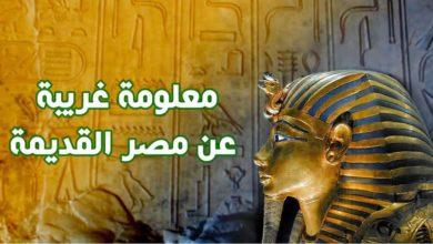 اسئلة معلومات عامة عن مصر