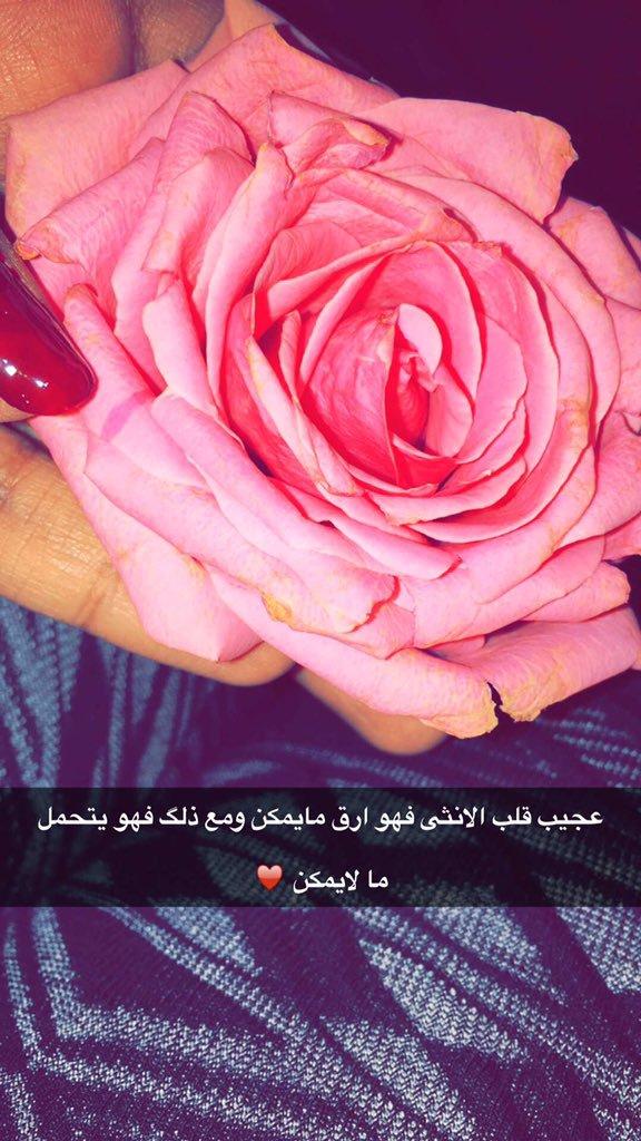 خواطر مكتوبة في الورود