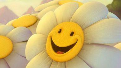 عبارات عن الابتسامة باللغة الانجليزية