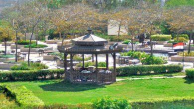 معلومات عن حديقة الازهر