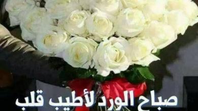 صباح الورد لأطيب قلب